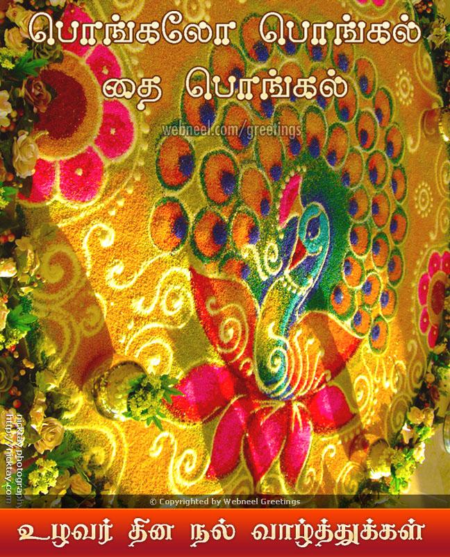 Pongal greeting card beautiful rangoli m4hsunfo