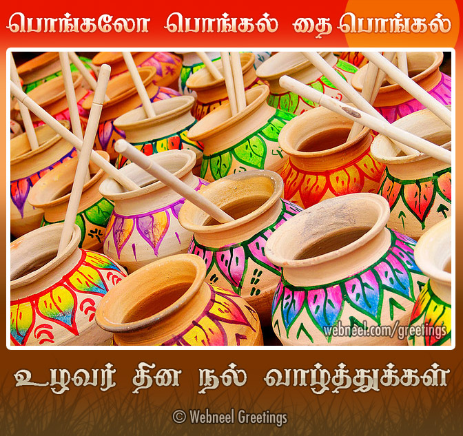 Pongal greeting card pongalo pongal preview pongal greeting card pongalo pongal m4hsunfo
