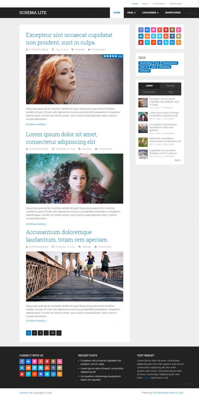 schema lite - free responsive wordpress theme