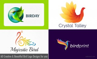 60 Creative Bird Logo Designs and Ideas for your inspiration