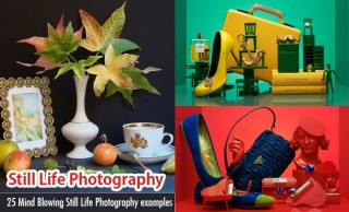 50 Beautiful Still Life Photography Ideas and Tips for your inspiration - part 2