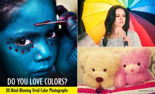 30 Beautiful Vivid and Colorful Photography Examples and Tips for Beginners