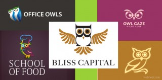 40 Owl Logo Design examples for your inspiration