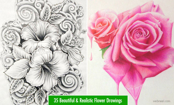 45 Beautiful and Simple Flower Drawings - Pencil Drawings