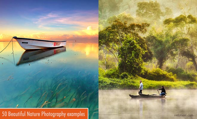 24 Beautiful Nature Photography examples for your inspiration