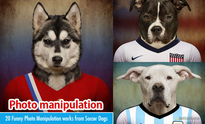 20 Funny Photo Manipulation works from Soccer Nations Dogs