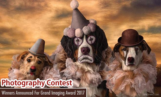 Winners Announced For Grand Imaging Award 2017