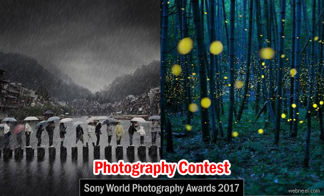 Sony World Photography Awards 2017 - Photography Contest