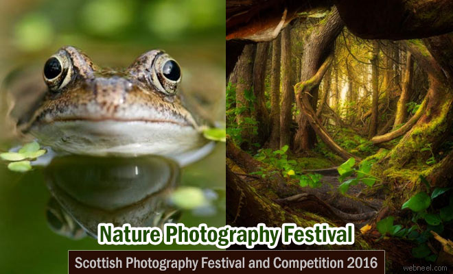 Scottish Nature Photography Festival and Competition 2016