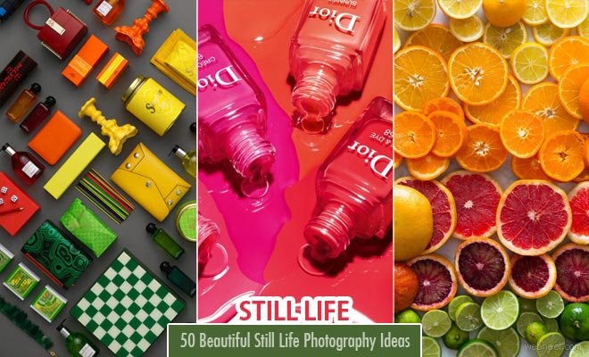 25 Beautiful Still Life Photography examples from famous photographers