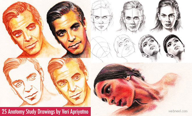 25 Anatomy Study Drawings by Veri Apriyatno - Tutorial for Beginners