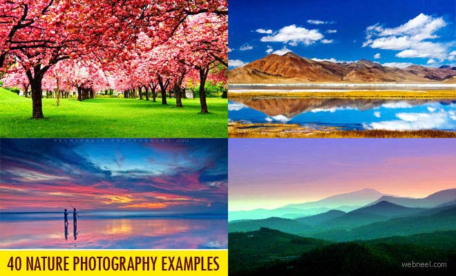 nature backgrounds pictures