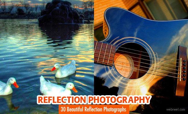 30 Mind-Blowing Reflection Photography examples and Tips for beginners