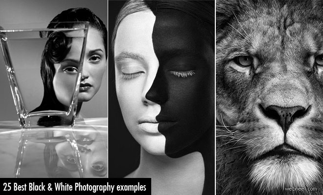 30 Mind-Blowing Black and White Photography examples - part 2