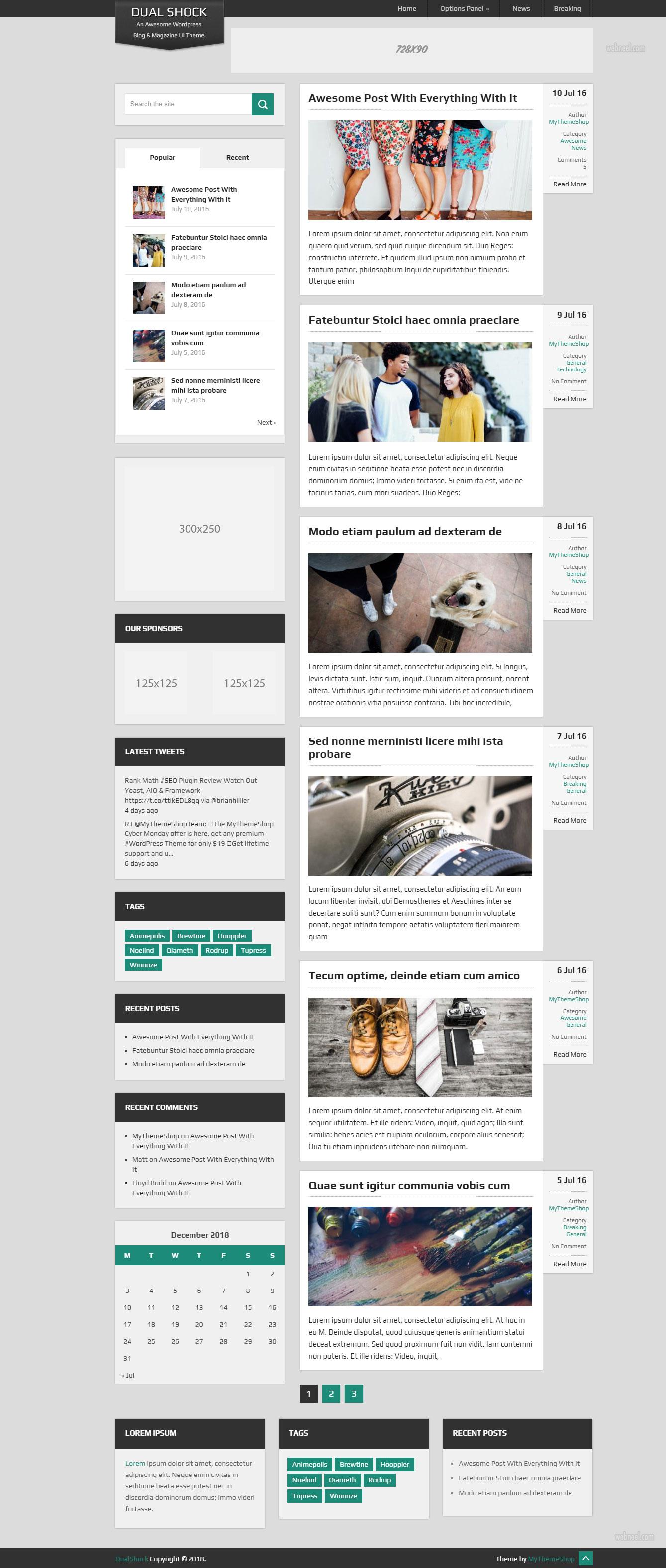 Dualshock Blog   Free Wordpress theme