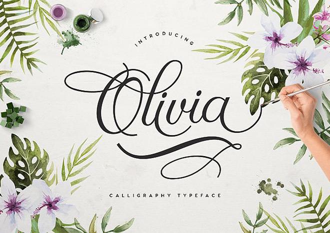 Free Font calliography   Olivia