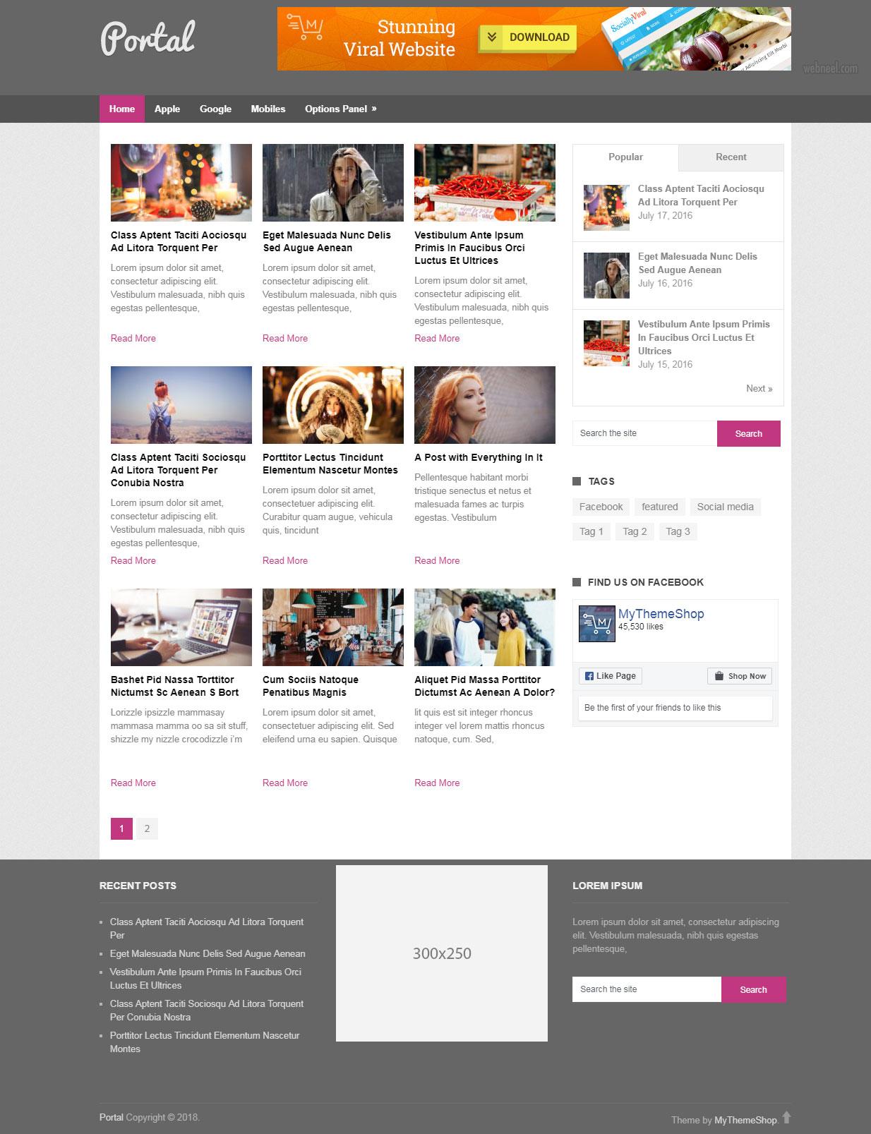 Free Magazine Portal   Free wordpress theme