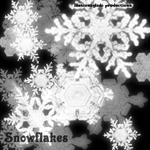 Snow Flakes 5   Photoshop Brush