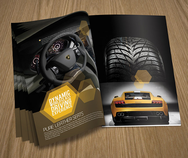 creative best brochure design 13