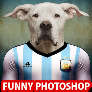 Photo Manipulation Animals