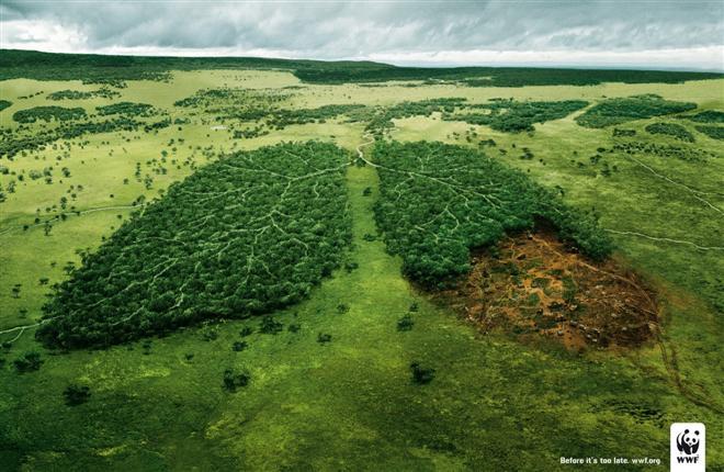 landscape advertising ideas