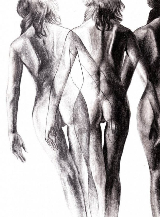 Anatomic study (17)