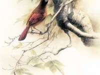 Birds Art Painting (3)