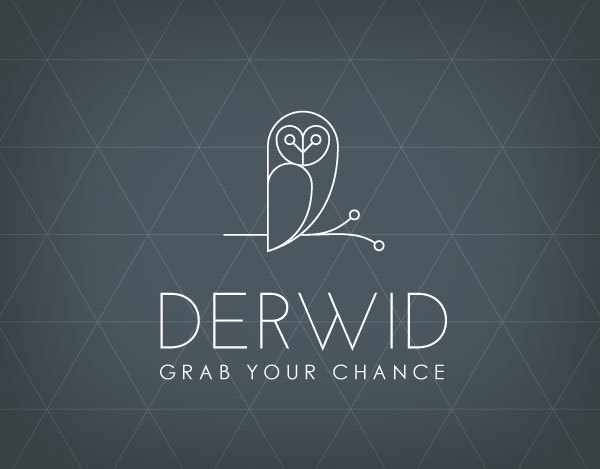 derwid   owl concept logo   designed by marco lucidi