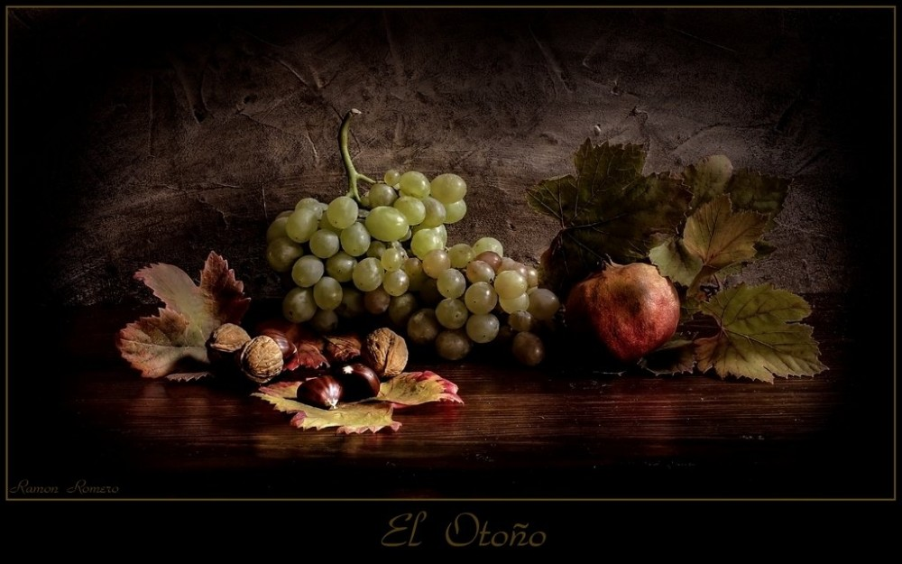 Still Life Oil Painting by Ramon Romero (3)