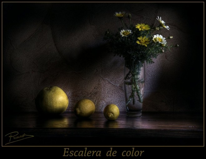 Still Life Oil Painting by Ramon Romero