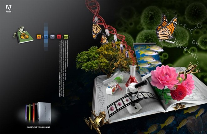 adobe photoshop creative campaign splash screen design (12)