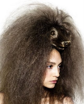 animal hair style (15)