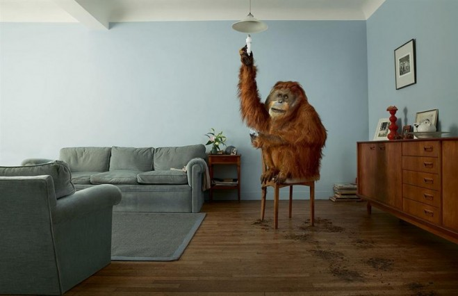 brilliant advertisment photography Jean Yves Lemoigne