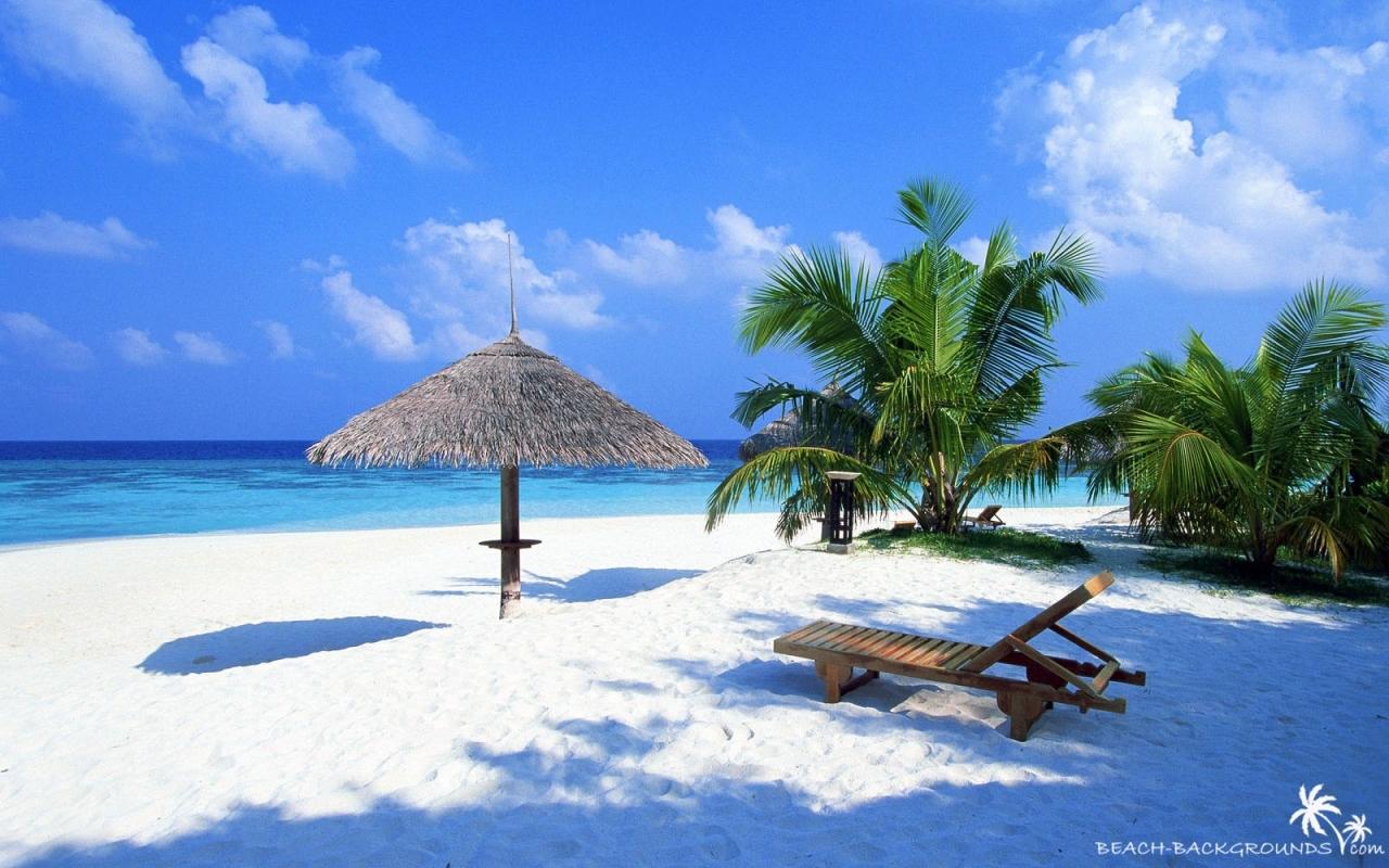 tropical beach wallpaper