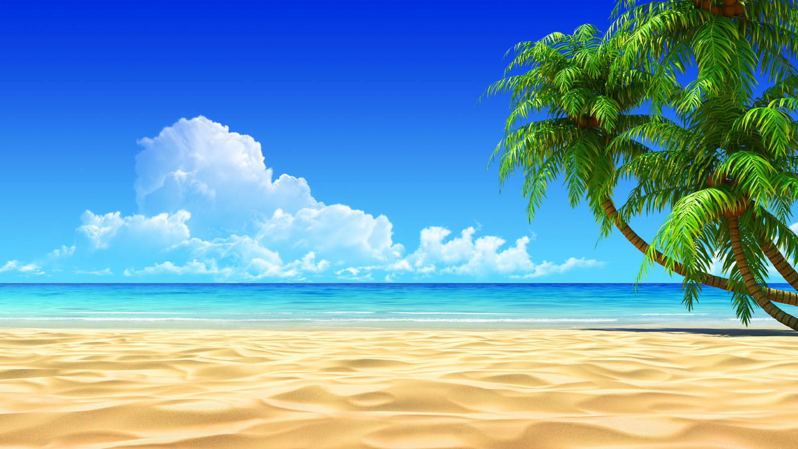 Daily hd wallpaper  Beach and sand wallpaper 3D