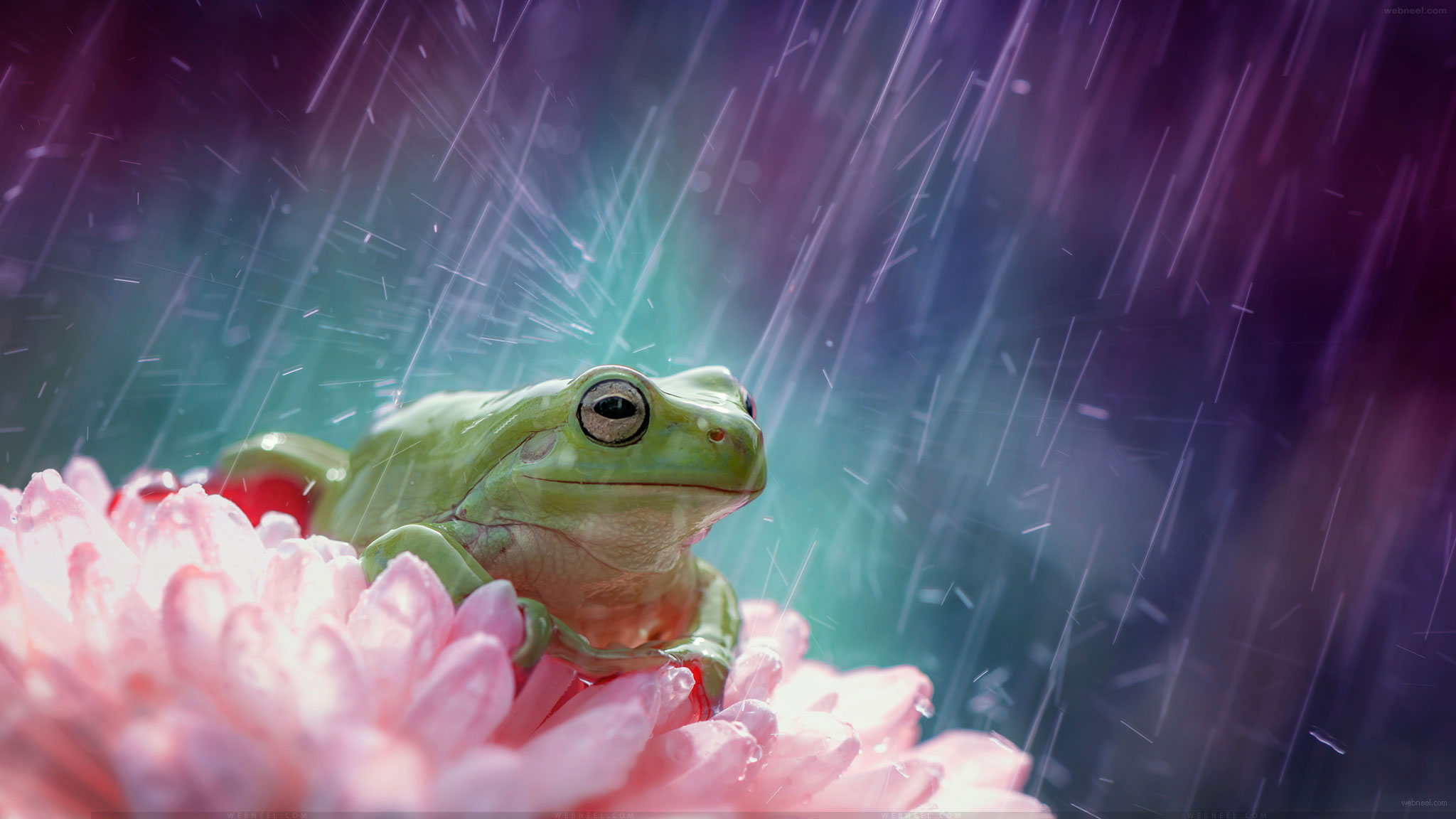 rain wallpaper by ahmadbaihaki