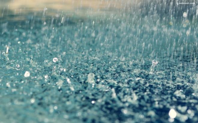 rain wallpaper raindrops