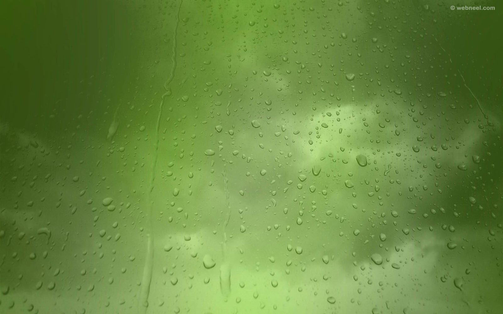 rain wallpaper green