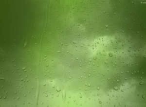 15 rain wallpaper green