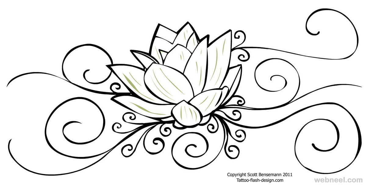 flower drawing lotus