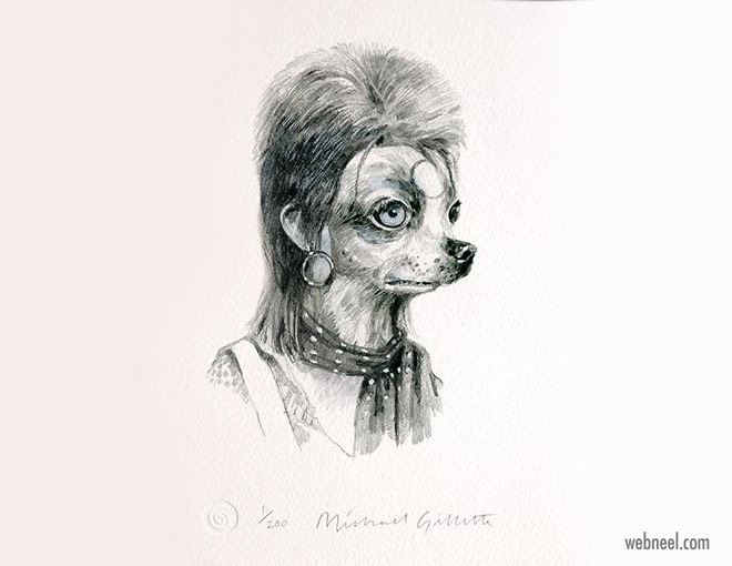 pencil drawing dog ziggy funny by michaelgillette