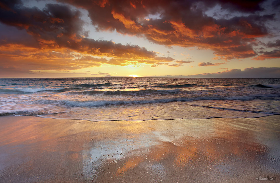 nature photography beach hawaii by patrick smith
