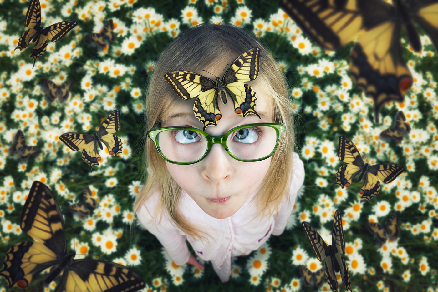 photo manipulation butterfly by john wilhelm