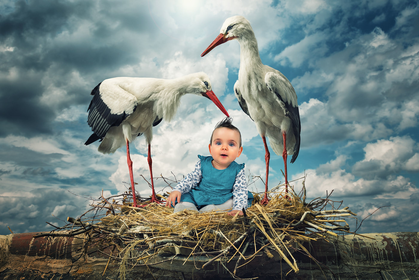 photo manipulation stork baby by john wilhelm
