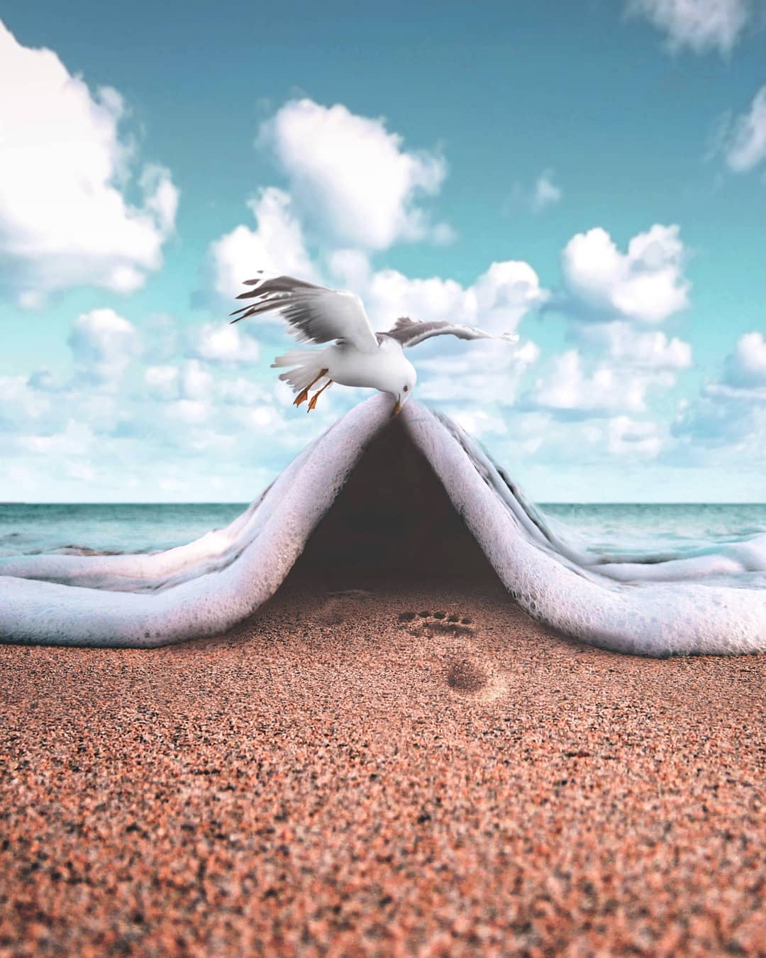 photo manipulation sea cover