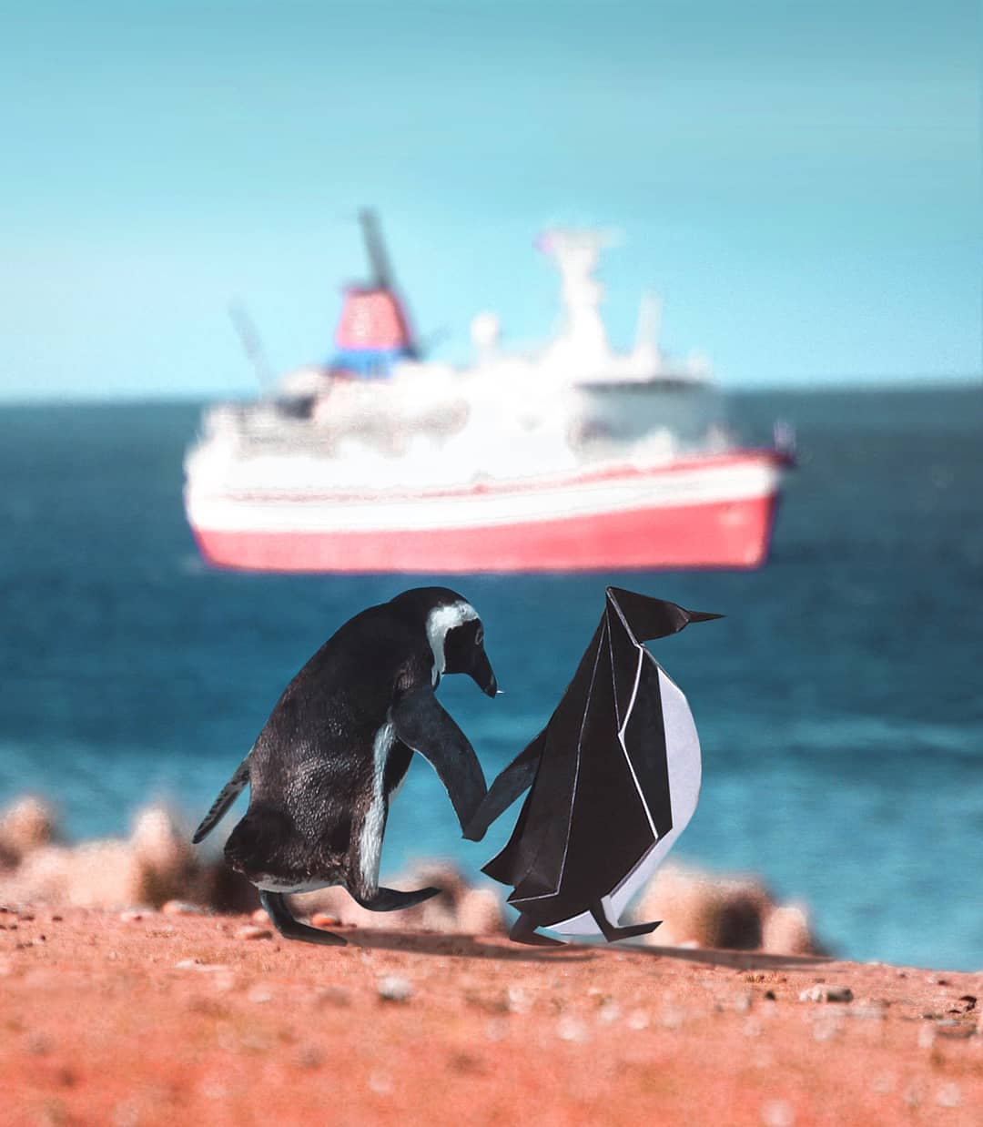 photo manipulation penguin