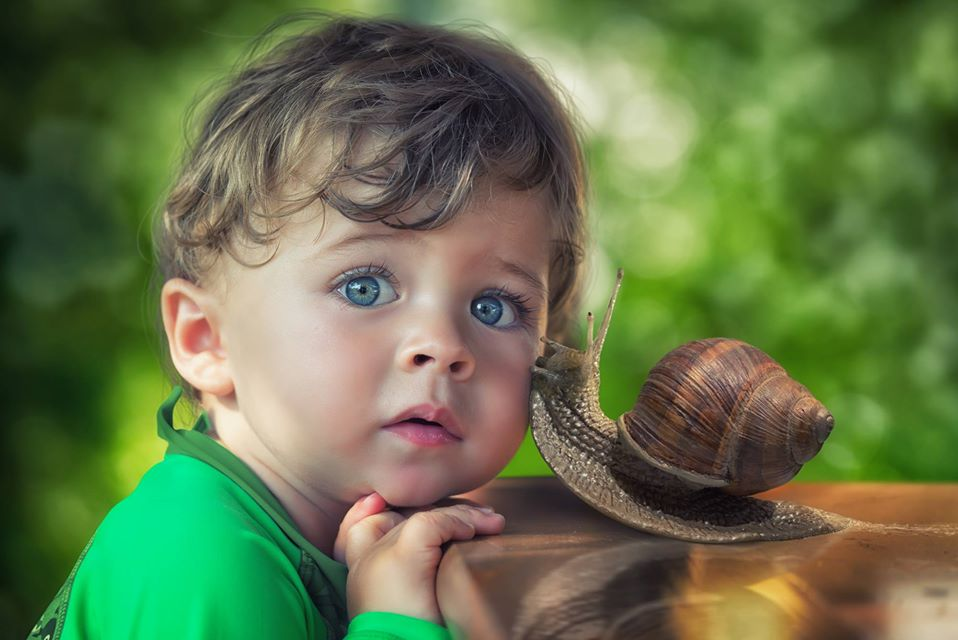 photo manipulation snail kiss by john wilhelm