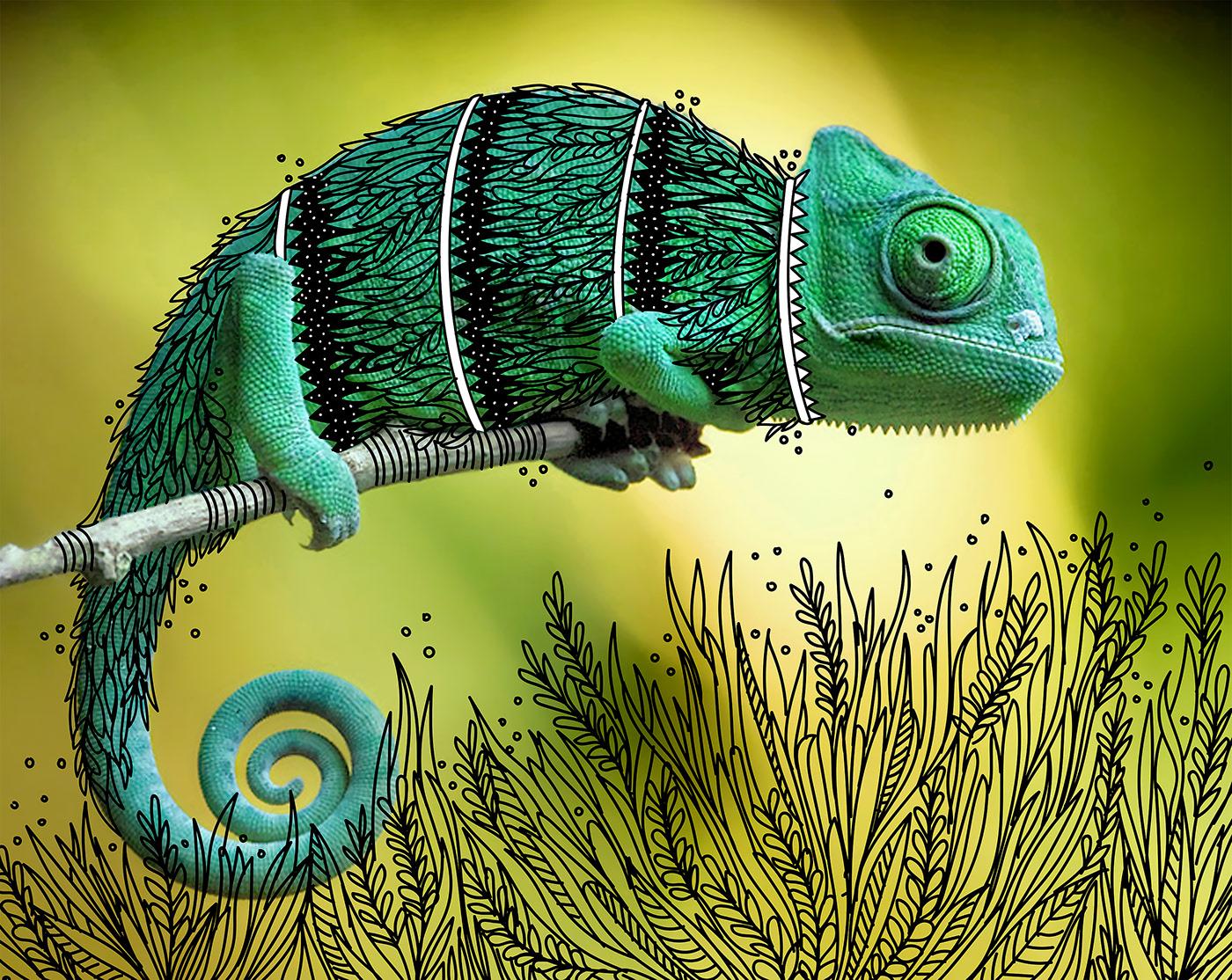 creative art ideas chameleon