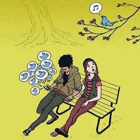 funny cartoons social media bird tweet