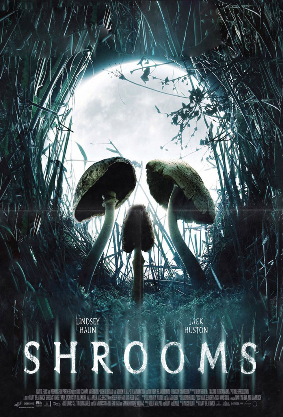 optical illusiion movie poster shrooms